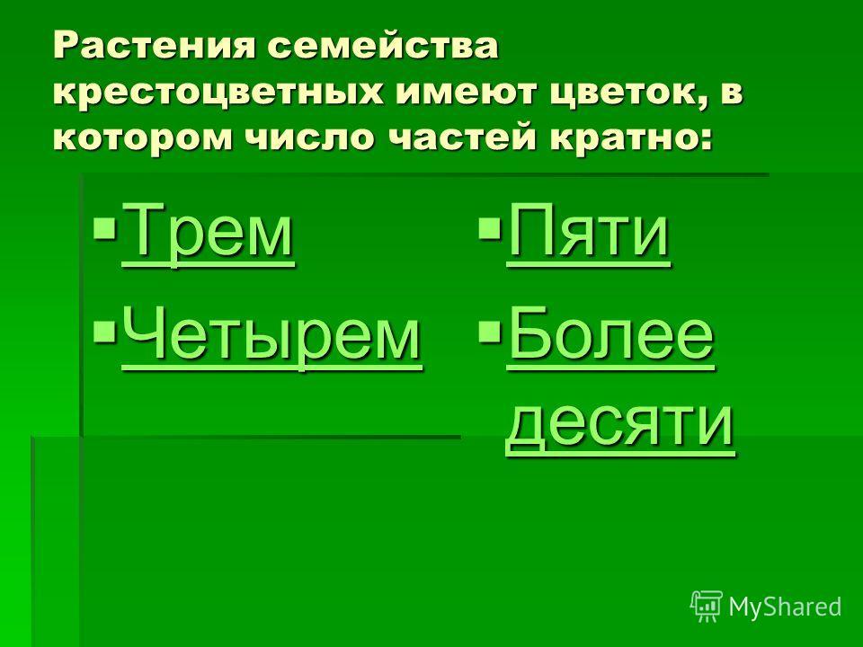 Растения семейства крестоцветных имеют цветок, в котором число частей кратно: Трем Трем Трем Четырем Четырем Четырем Пяти Пяти Пяти Более десяти Более десяти Более десяти Более десяти