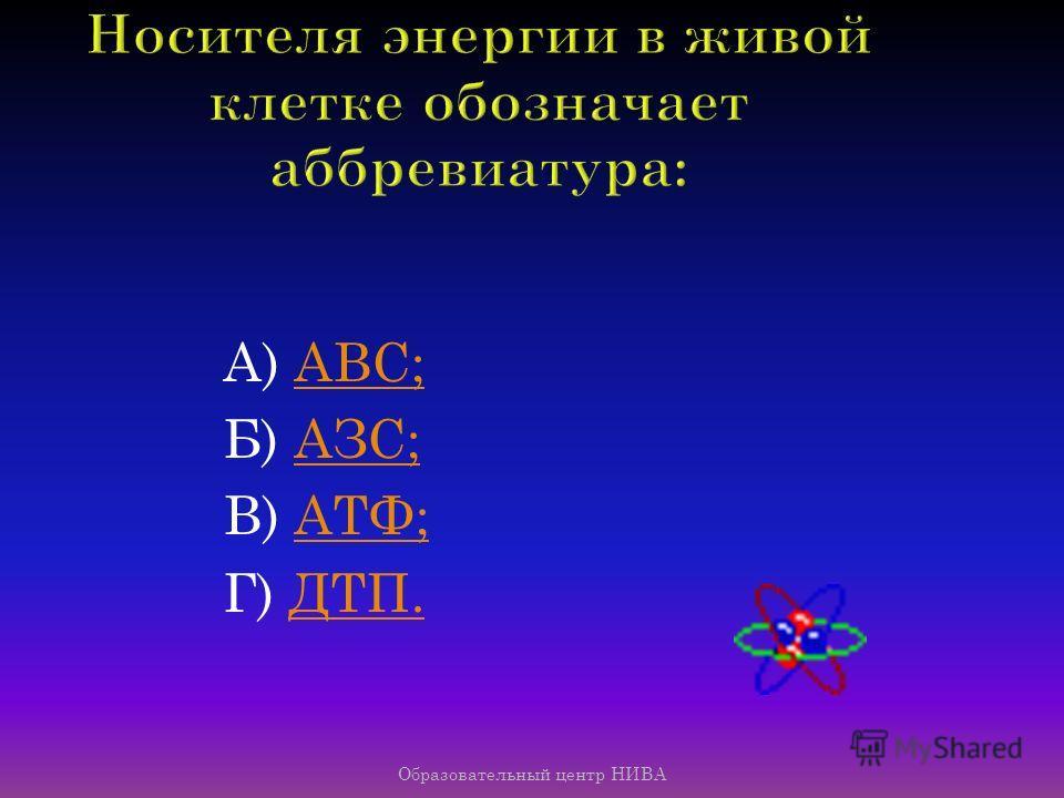 Образовательный центр НИВА К содержащейся в ДНК генетической информации имеет отношение число: А) 38; Б) 64; В) 25; Г) 32.