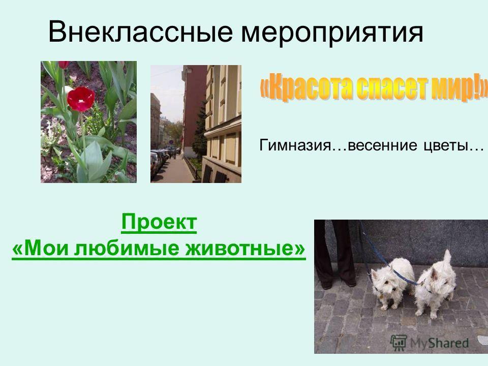 Гимназия…весенние цветы… Внеклассные мероприятия Проект «Мои любимые животные»