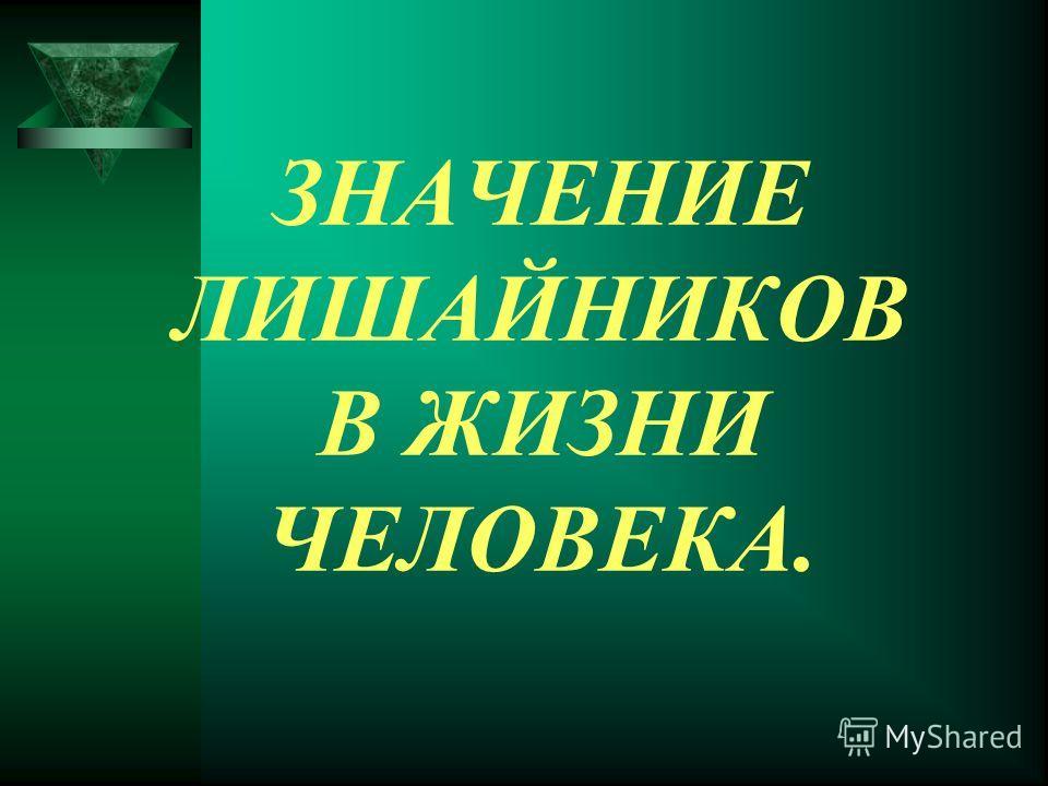 ЗНАЧЕНИЕ ЛИШАЙНИКОВ В ЖИЗНИ ЧЕЛОВЕКА.