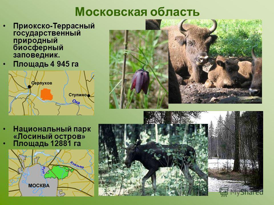 Московская область Приокско-Террасный государственный природный биосферный заповедник. Площадь 4 945 га Национальный парк «Лосиный остров» Площадь 12881 га