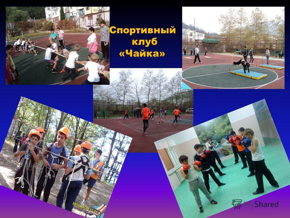 Спортивный клуб «Чайка»