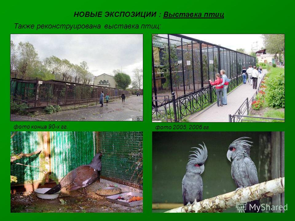 НОВЫЕ ЭКСПОЗИЦИИ : Выставка птиц Также реконструирована выставка птиц: фото конца 90-х гг. фото 2005, 2006 гг.