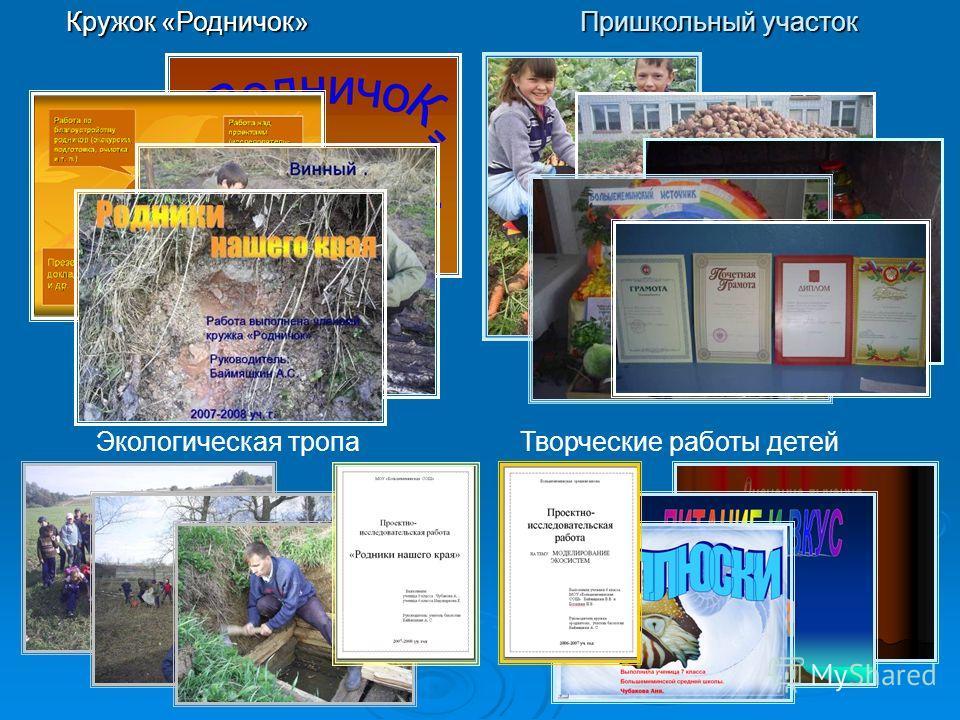 Кружок «Родничок» Пришкольный участок Экологическая тропаТворческие работы детей