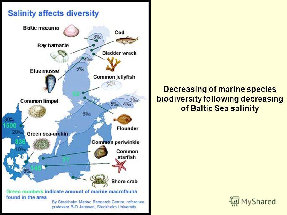 Decreasing of marine species biodiversity following decreasing of Baltic Sea salinity