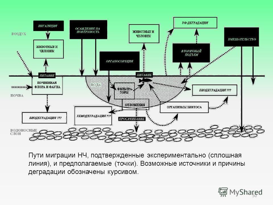 Пути миграции НЧ, подтвержденные экспериментально (сплошная линия), и предполагаемые (точки). Возможные источники и причины деградации обозначены курсивом. 50