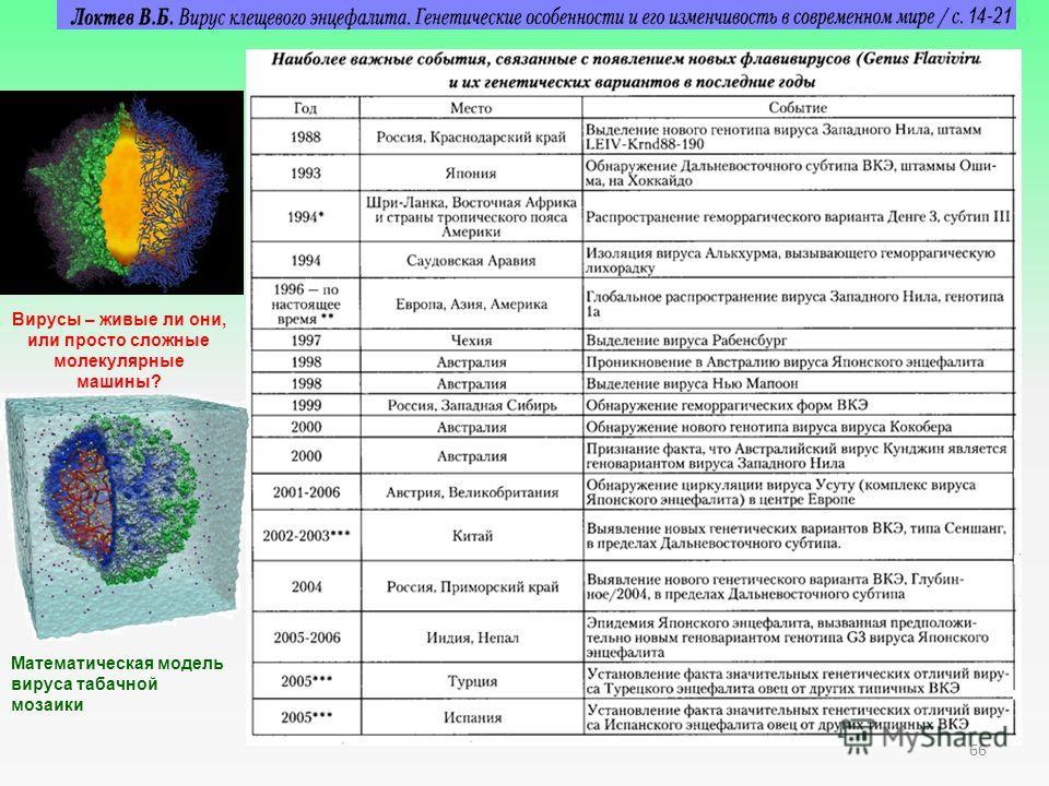 Вирусы – живые ли они, или просто сложные молекулярные машины? Математическая модель вируса табачной мозаики 66