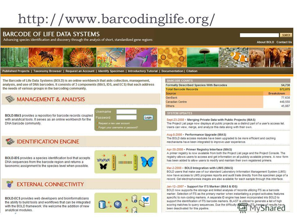 http://www.barcodinglife.org/