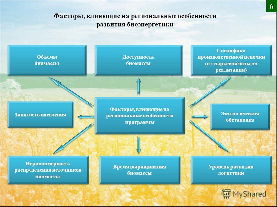 Специфика производственной цепочки (от сырьевой базы до реализации) Доступность биомассы Доступность биомассы Объемы биомассы Объемы биомассы Факторы, влияющие на региональные особенности программы Неравномерность распределения источников биомассы Вр