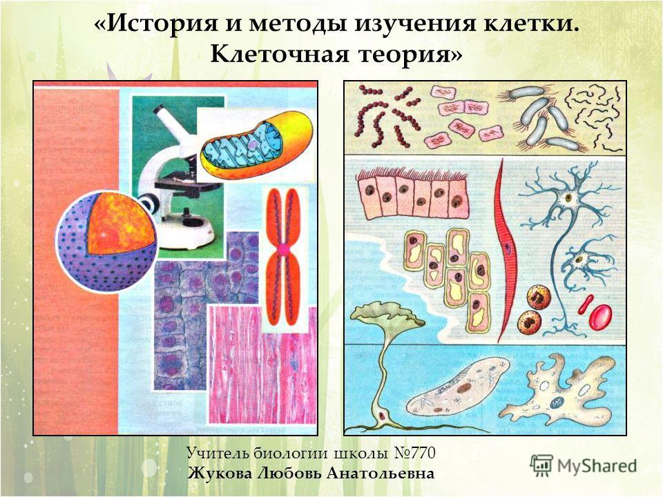«История и методы изучения клетки. Клеточная теория» Учитель биологии школы 770 Жукова Любовь Анатольевна