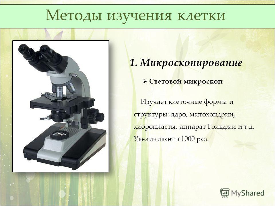 1. Микроскопирование Световой микроскоп Изучает клеточные формы и структуры: ядро, митохондрии, хлоропласты, аппарат Гольджи и т.д. Увеличивает в 1000 раз. Методы изучения клетки