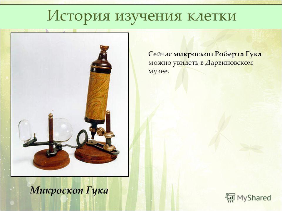 Микроскоп Гука Сейчас микроскоп Роберта Гука можно увидеть в Дарвиновском музее. История изучения клетки