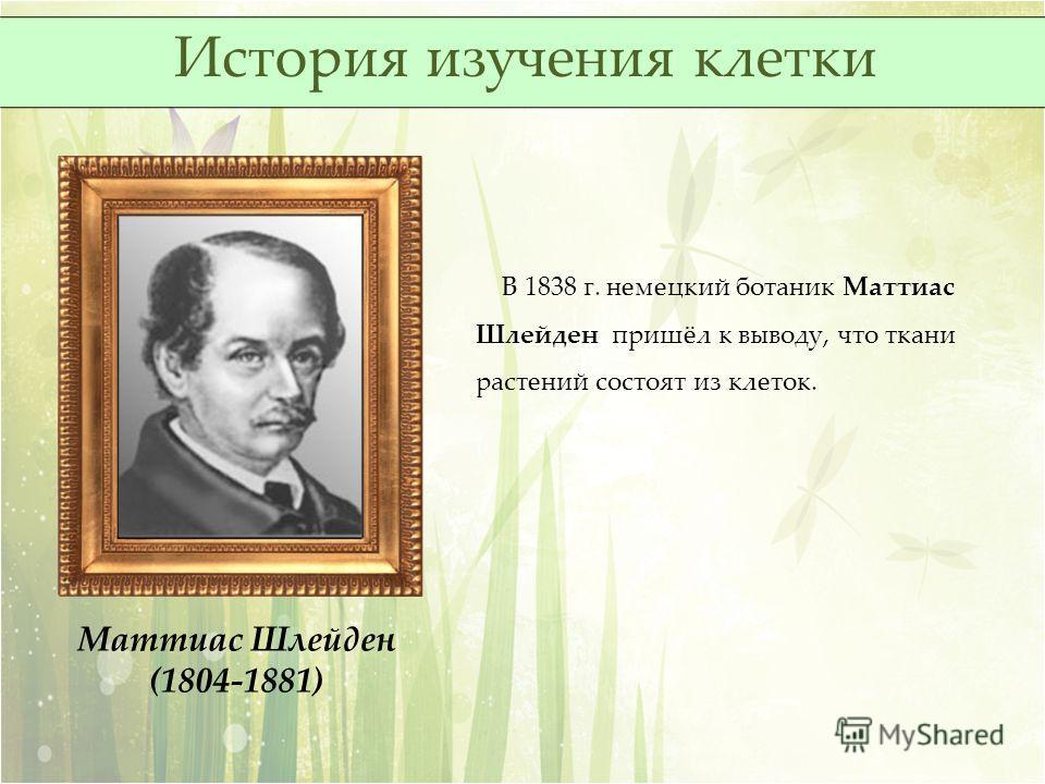 Маттиас Шлейден (1804-1881) В 1838 г. немецкий ботаник Маттиас Шлейден пришёл к выводу, что ткани растений состоят из клеток. История изучения клетки