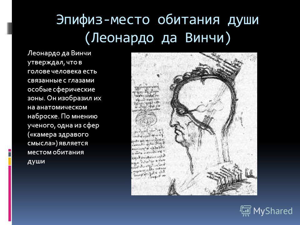 Эпифиз-место обитания души (Леонардо да Винчи) Леонардо да Винчи утверждал, что в голове человека есть связанные с глазами особые сферические зоны. Он изобразил их на анатомическом наброске. По мнению ученого, одна из сфер («камера здравого смысла»)