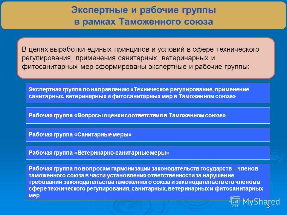 3 Экспертные и рабочие группы в рамках Таможенного союза В целях выработки единых принципов и условий в сфере технического регулирования, применения санитарных, ветеринарных и фитосанитарных мер сформированы экспертные и рабочие группы: Экспертная гр