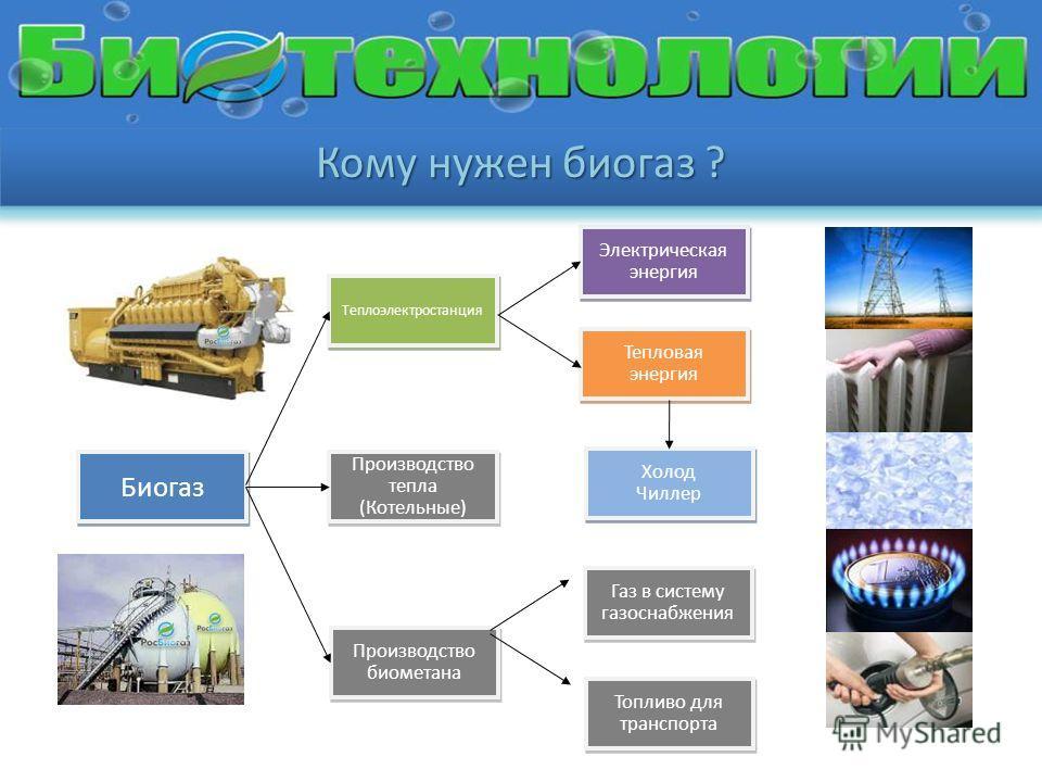 Производство тепла (Котельные) Производство тепла (Котельные) Производство биометана Биогаз Теплоэлектростанция Топливо для транспорта Газ в систему газоснабжения Тепловая энергия Тепловая энергия Электрическая энергия Электрическая энергия Холод Чил