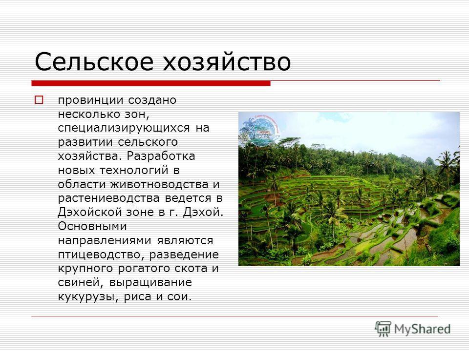 Сельское хозяйство провинции создано несколько зон, специализирующихся на развитии сельского хозяйства. Разработка новых технологий в области животноводства и растениеводства ведется в Дэхойской зоне в г. Дэхой. Основными направлениями являются птице
