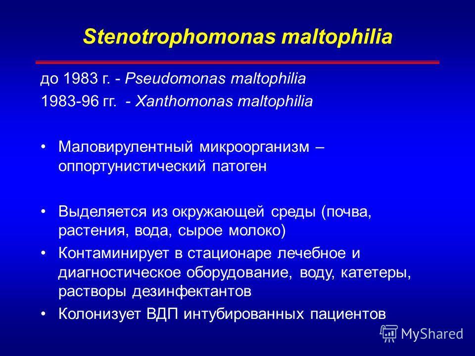 Stenotrophomonas maltophilia до 1983 г. - Pseudomonas maltophilia 1983-96 гг. - Xanthomonas maltophilia Маловирулентный микроорганизм – оппортунистический патоген Выделяется из окружающей среды (почва, растения, вода, сырое молоко) Контаминирует в ст