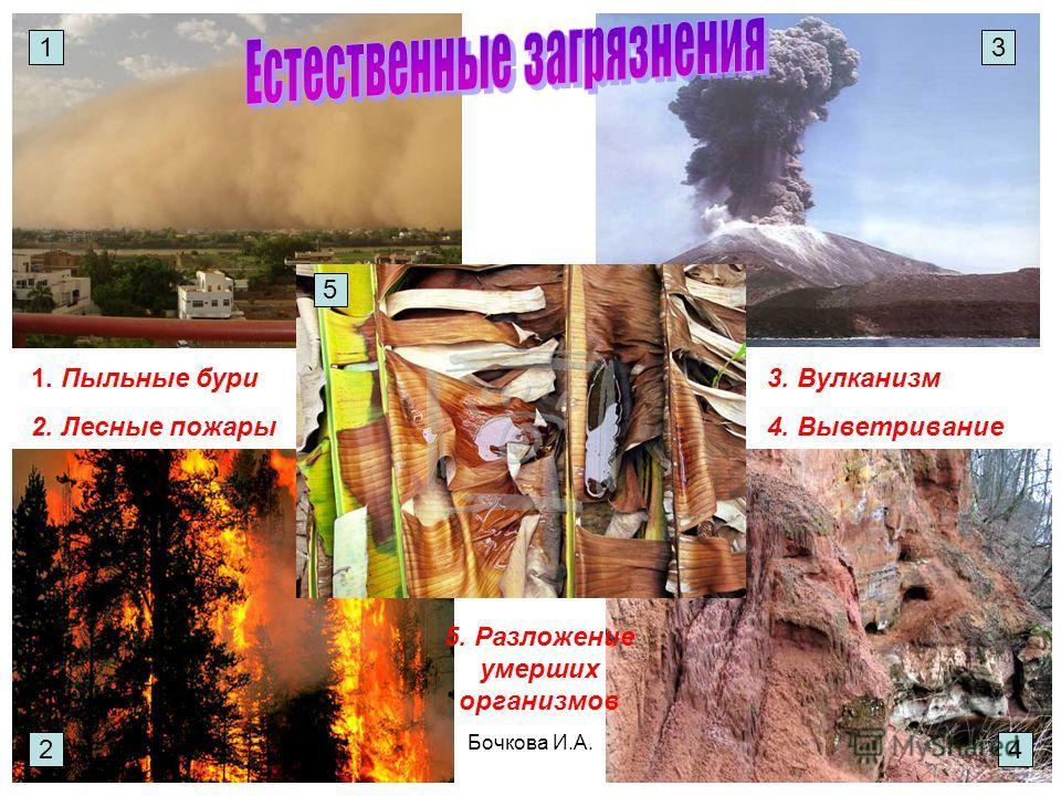 Бочкова И.А. 1. Пыльные бури 2. Лесные пожары 3. Вулканизм 4. Выветривание 5. Разложение умерших организмов 1 2 5 4 3