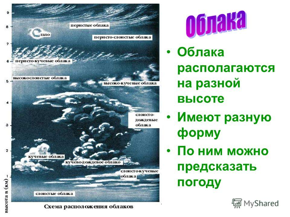 Бочкова И.А. Облака располагаются на разной высоте Имеют разную форму По ним можно предсказать погоду