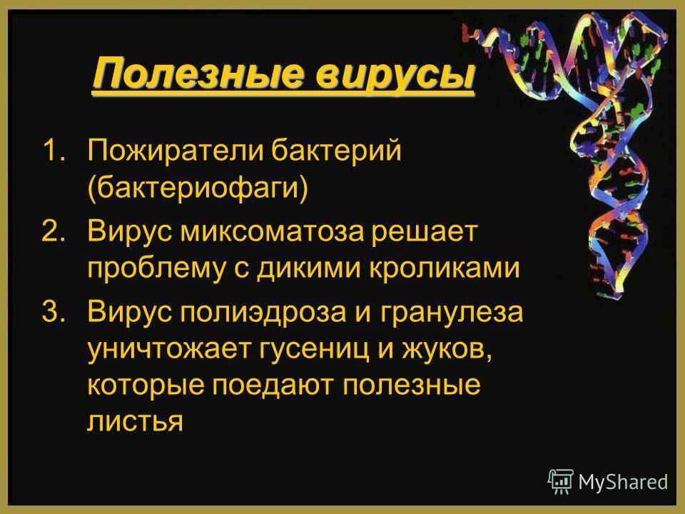 Полезные вирусы 1.Пожиратели бактерий (бактериофаги) 2.Вирус миксоматоза решает проблему с дикими кроликами 3.Вирус полиэдроза и гранулеза уничтожает гусениц и жуков, которые поедают полезные листья