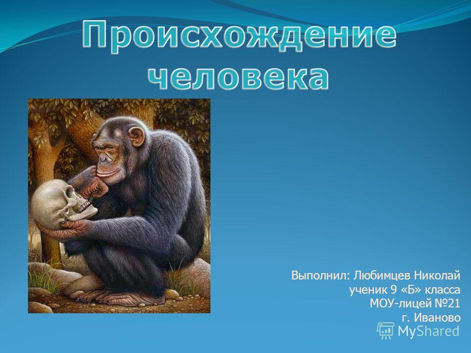 Выполнил: Любимцев Николай ученик 9 «Б» класса МОУ-лицей 21 г. Иваново