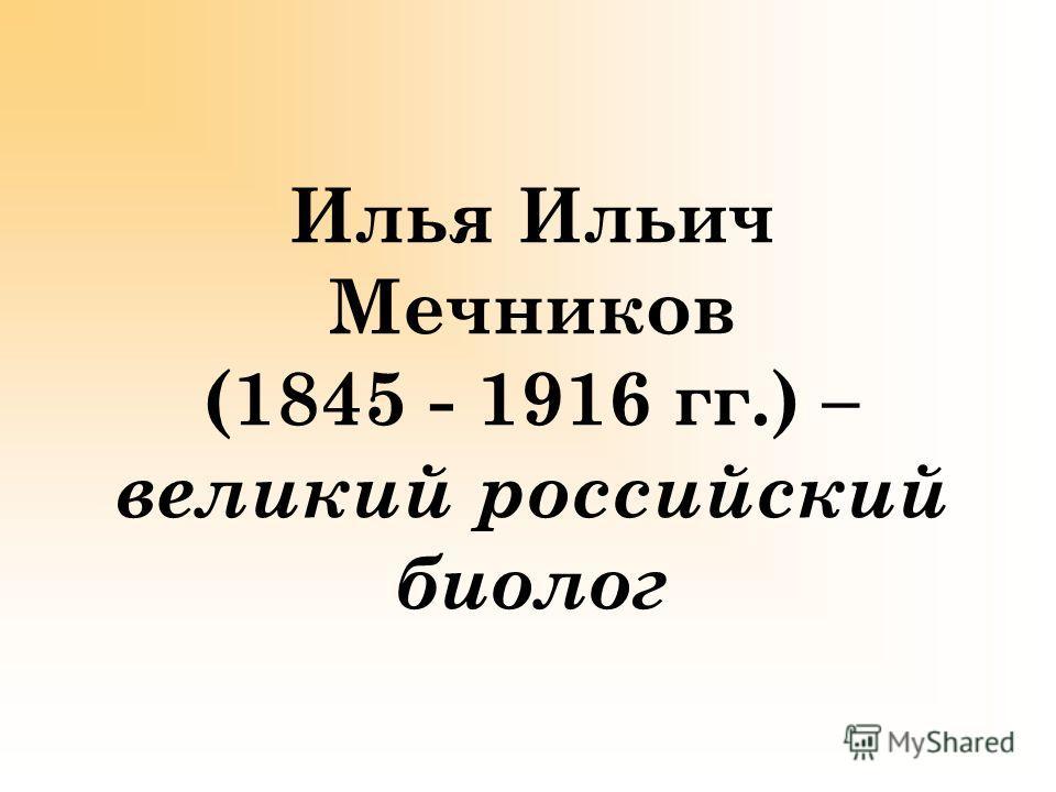 Илья Ильич Мечников (1845 - 1916 гг.) – великий российский биолог