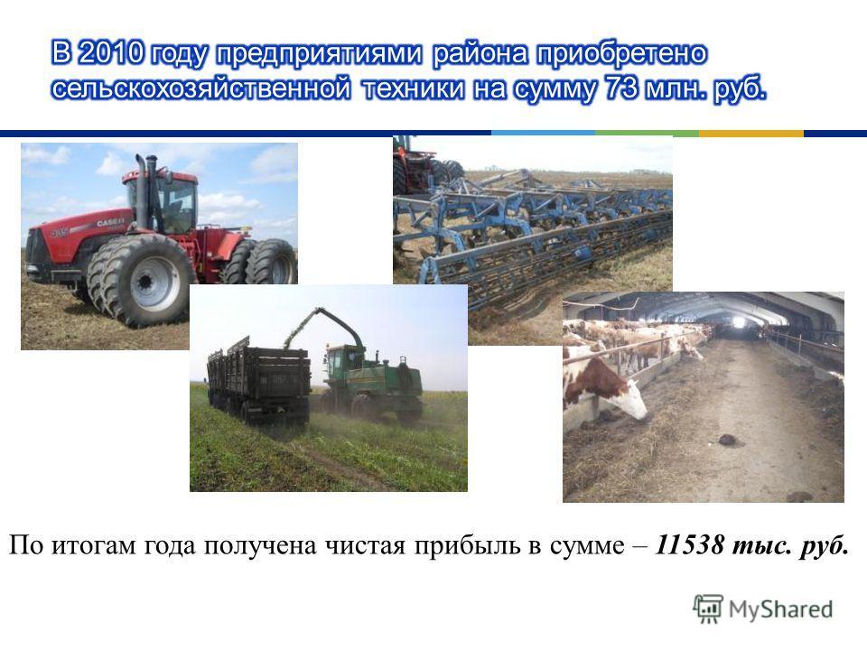 По итогам года получена чистая прибыль в сумме – 11538 тыс. руб.