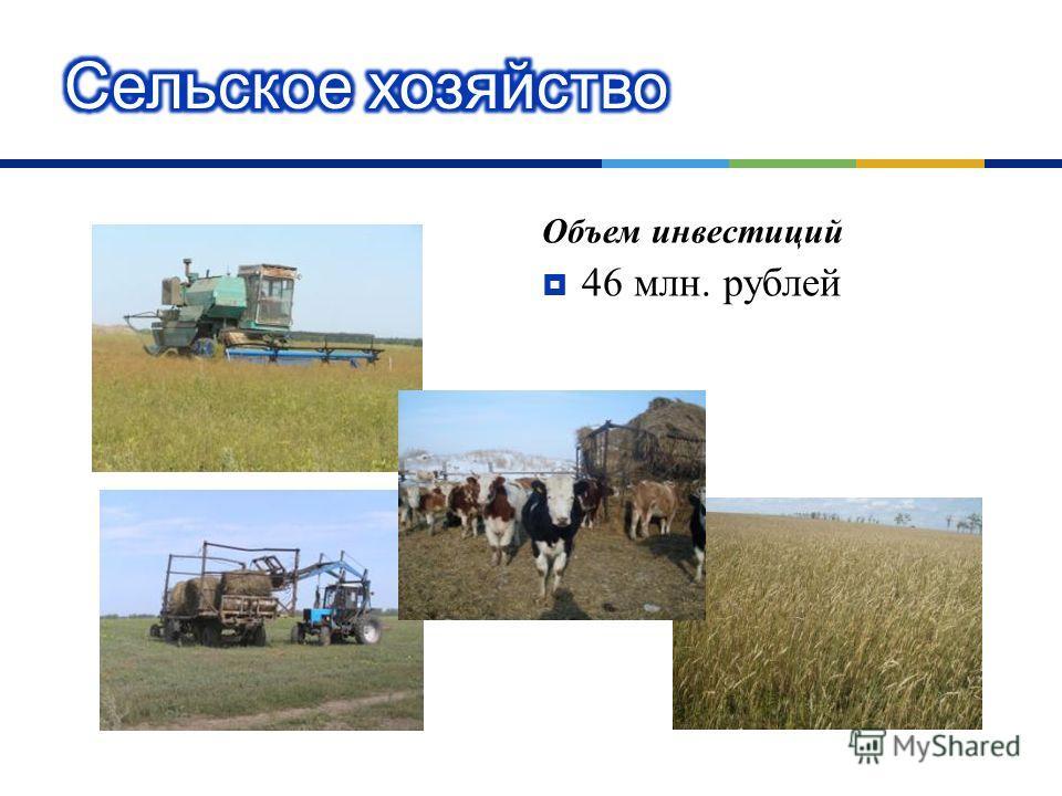 Объем инвестиций 46 млн. рублей