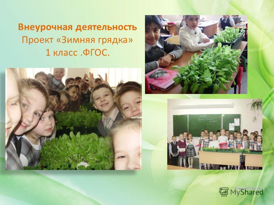 Внеурочная деятельность Проект «Зимняя грядка» 1 класс.ФГОС.