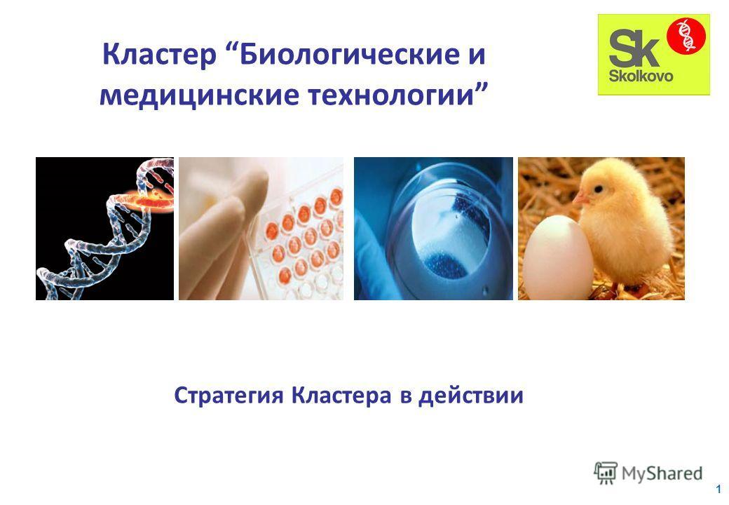 Стратегия Кластера в действии Кластер Биологические и медицинские технологии 1