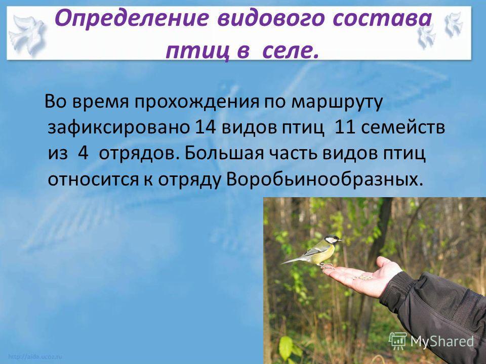 Определение видового состава птиц в селе. Во время прохождения по маршруту зафиксировано 14 видов птиц 11 семейств из 4 отрядов. Большая часть видов птиц относится к отряду Воробьинообразных.