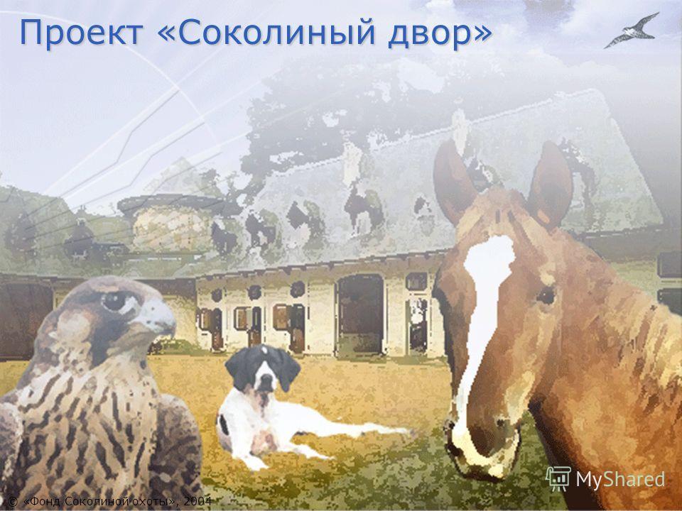 Проект «Соколиный двор» © «Фонд Соколиной охоты», 2004