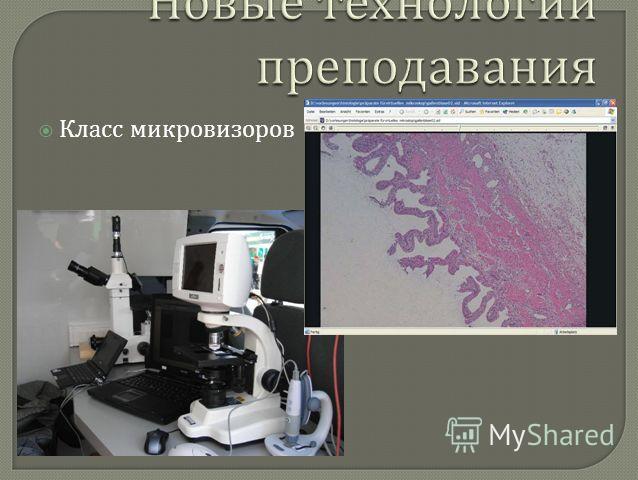 Класс микровизоров