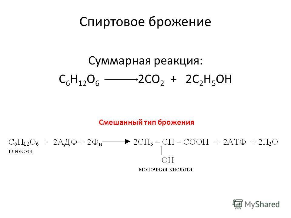 Спиртовое брожение Суммарная реакция: С 6 Н 12 О 6 2СО 2 + 2С 2 Н 5 ОН Смешанный тип брожения