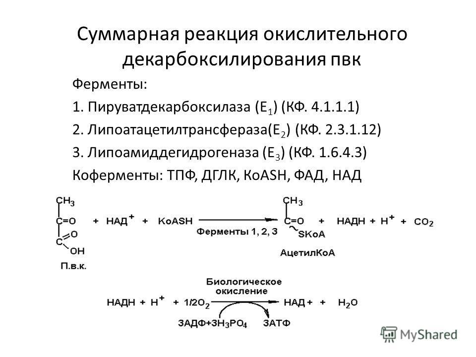 Суммарная реакция окислительного декарбоксилирования пвк Ферменты: 1. Пируватдекарбоксилаза (Е 1 ) (КФ. 4.1.1.1) 2. Липоатацетилтрансфераза(Е 2 ) (КФ. 2.3.1.12) 3. Липоамиддегидрогеназа (Е 3 ) (КФ. 1.6.4.3) Коферменты: ТПФ, ДГЛК, КоАSН, ФАД, НАД