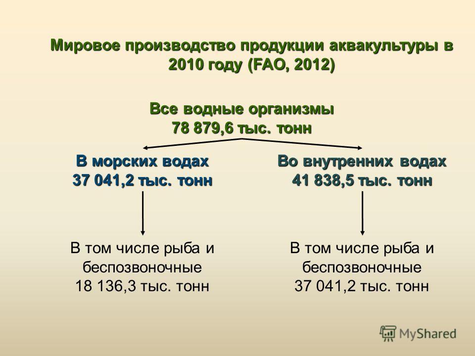 Мировое производство продукции аквакультуры в 2010 году (FAO, 2012) Все водные организмы 78 879,6 тыс. тонн В морских водах 37 041,2 тыс. тонн Во внут