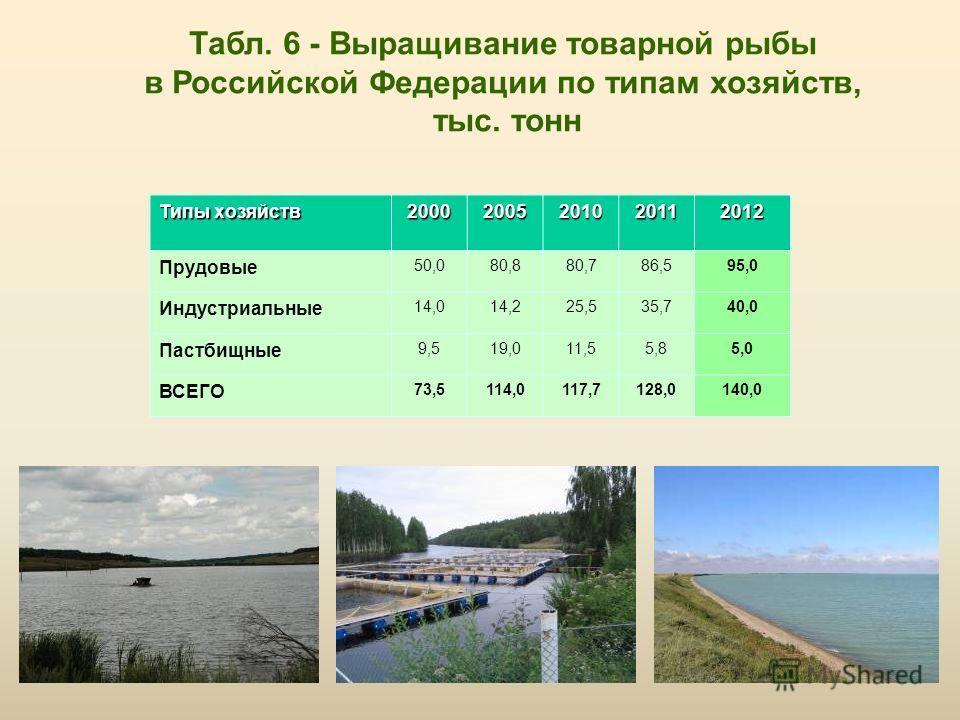 Табл. 6 - Выращивание товарной рыбы в Российской Федерации по типам хозяйств, тыс. тонн Типы хозяйств 20002005201020112012 Прудовые 50,080,880,786,595