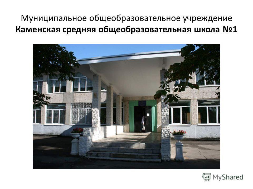 Муниципальное общеобразовательное учреждение Каменская средняя общеобразовательная школа 1