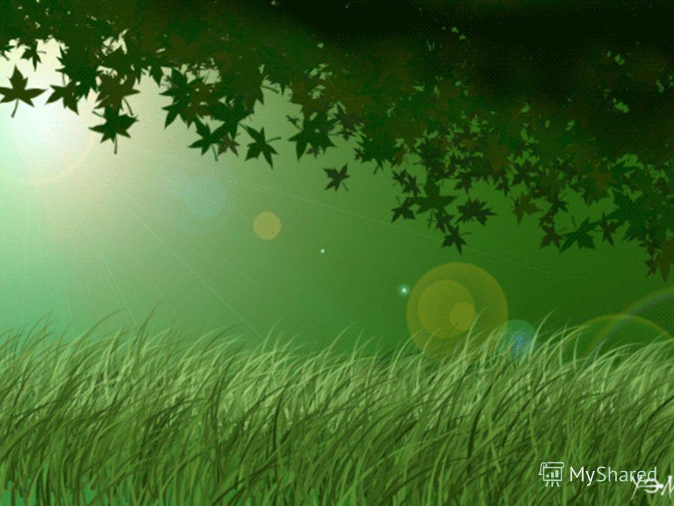 Биомасса Земли Биомасса Земли - совокупность всех живых организмов (живого вещества) планеты. Биомасса Земли выражается в единицах массы или энергии, отнесенной к единице площади или объема. Совокупная биомасса Земли составляет примерно 2,4 1012 т (о
