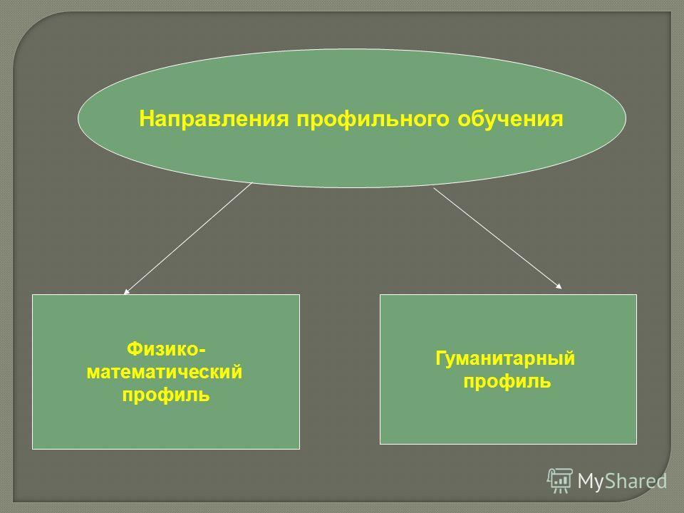 Направления профильного обучения Физико- математический профиль Гуманитарный профиль