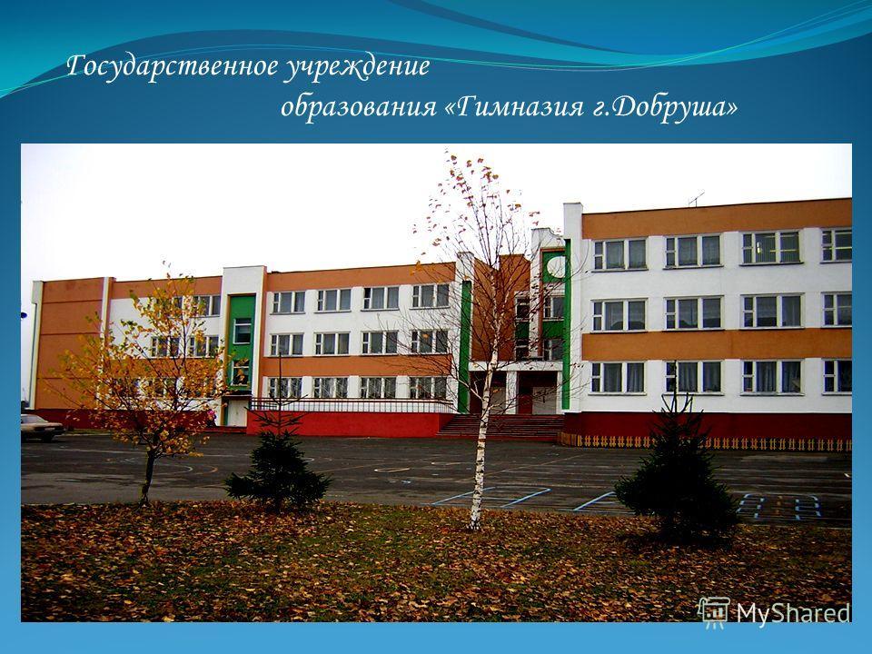 Государственное учреждение образования «Гимназия г.Добруша»