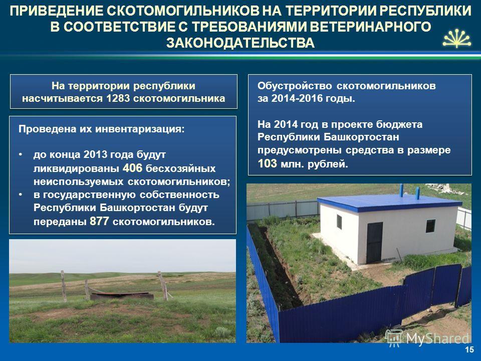 На территории республики насчитывается 1283 скотомогильника Проведена их инвентаризация: до конца 2013 года будут ликвидированы 406 бесхозяйных неиспользуемых скотомогильников; в государственную собственность Республики Башкортостан будут переданы 87