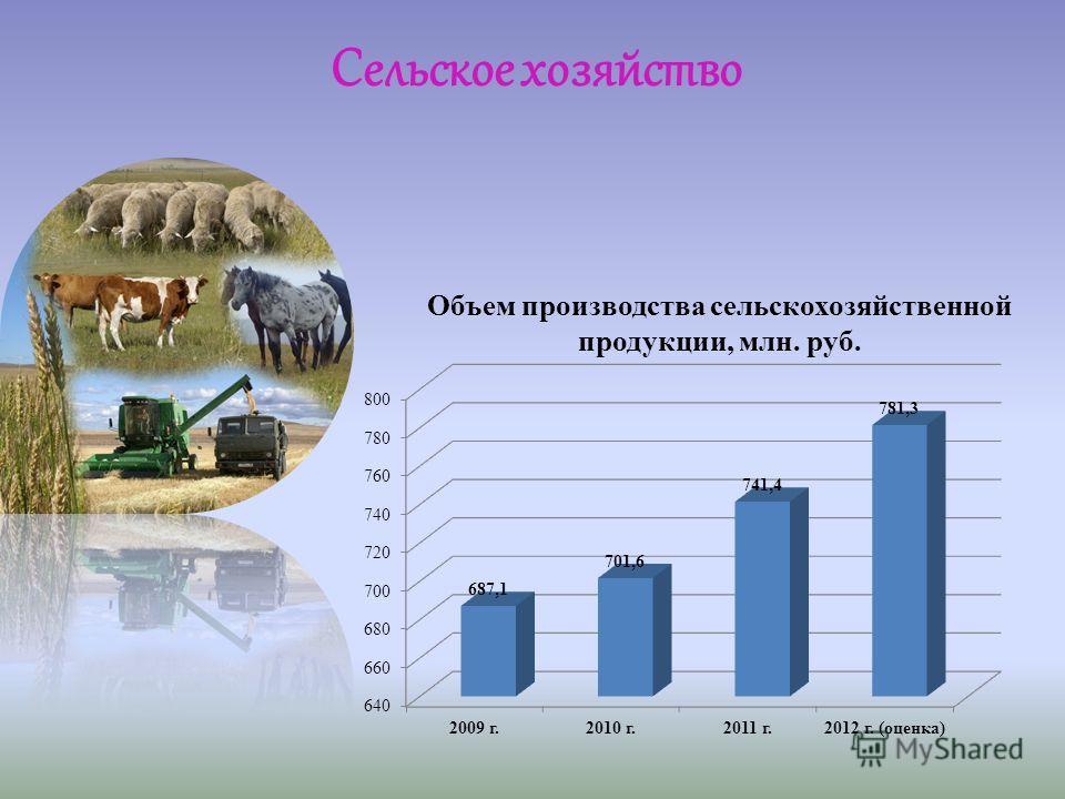 Объем производства сельскохозяйственной продукции, млн. руб. Сельское хозяйство