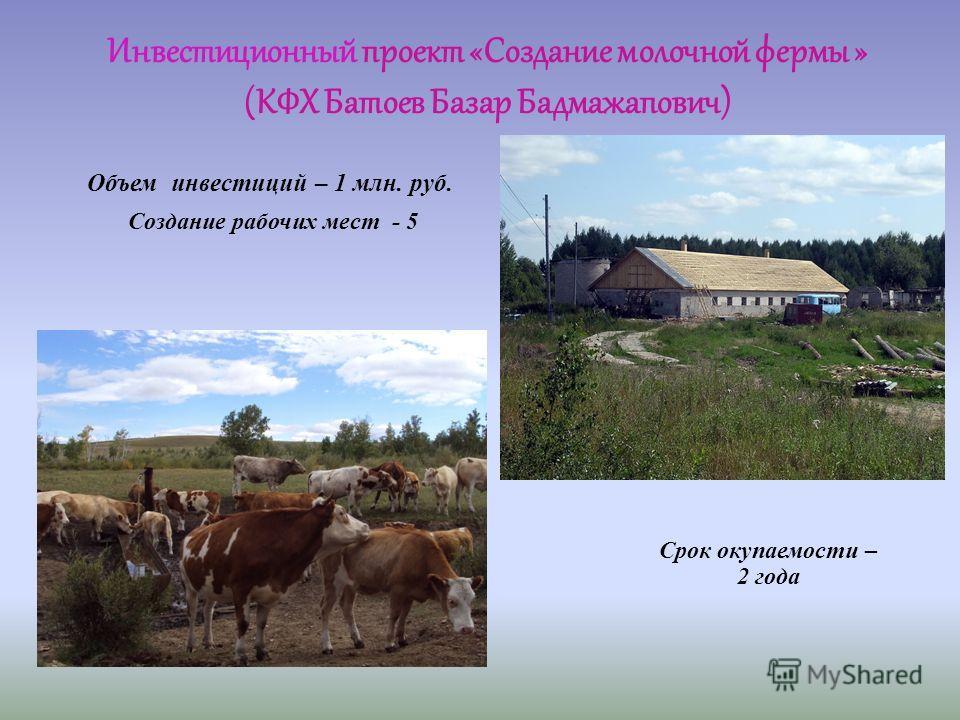 Инвестиционный проект «Создание молочной фермы » (КФХ Батоев Базар Бадмажапович) Объем инвестиций – 1 млн. руб. Создание рабочих мест - 5
