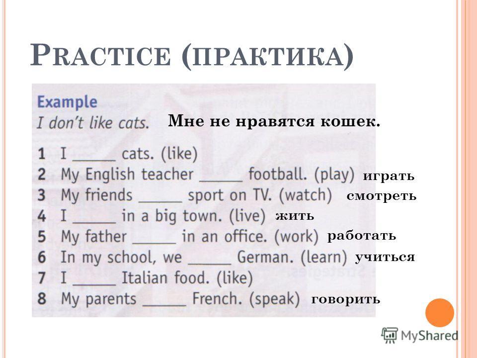 P RACTICE ( ПРАКТИКА ) Мне не нравятся кошек. играть смотреть жить работать говорить учиться
