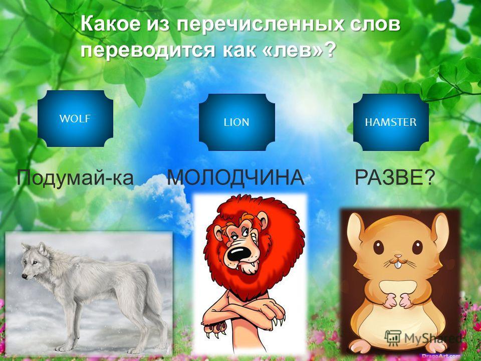 Какое из перечисленных слов переводится как «лев»? WOLF LIONHAMSTER Подумай-каМОЛОДЧИНАРАЗВЕ?