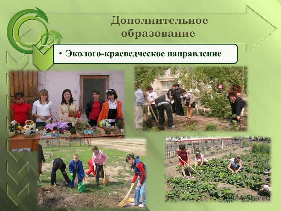 Дополнительное образование Эколого-краеведческое направление