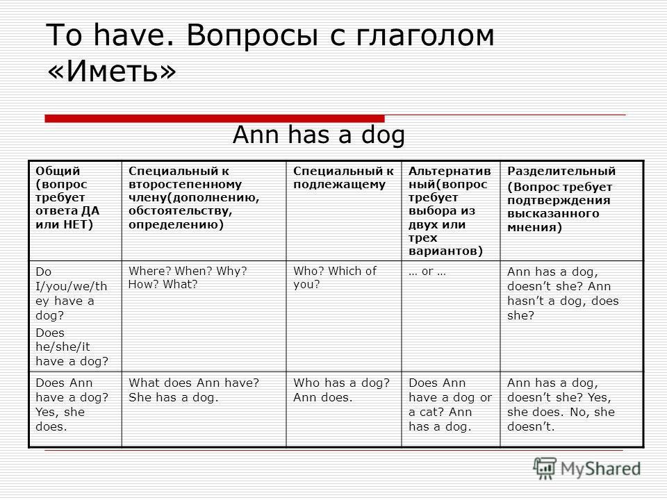 To have. Вопросы с глаголом «Иметь» Ann has a dog Общий (вопрос требует ответа ДА или НЕТ) Специальный к второстепенному члену(дополнению, обстоятельству, определению) Специальный к подлежащему Альтернатив ный(вопрос требует выбора из двух или трех в