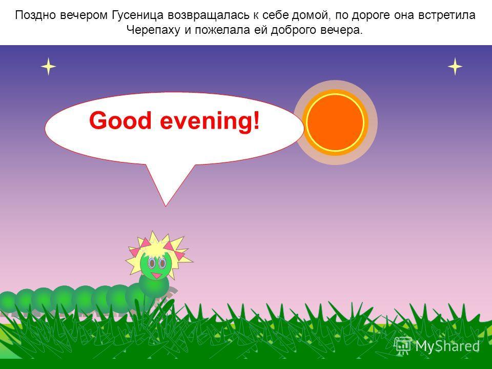 Когда солнышко поднималось совсем высоко в небо, Гусеница желала доброго дня! Good afternoon!
